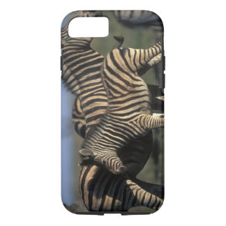 Africa, Botswana, Chobe National Park, Plains iPhone 7 Case