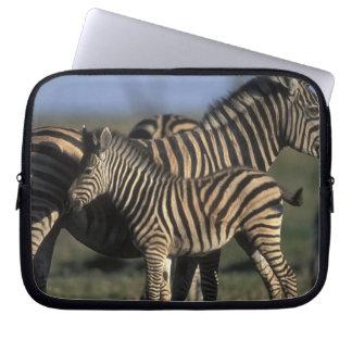 Africa, Botswana, Chobe National Park, Plains Laptop Sleeve