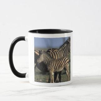 Africa, Botswana, Chobe National Park, Plains Mug