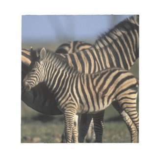 Africa, Botswana, Chobe National Park, Plains Notepad