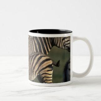 Africa, Botswana, Chobe National Park, Plains Two-Tone Coffee Mug