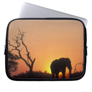 Africa, Botswana, Chobe National Park, Setting Laptop Sleeve