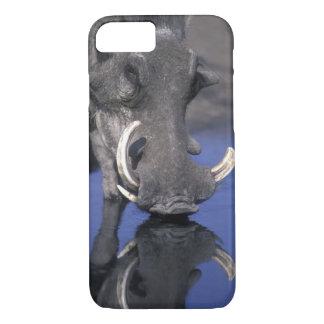 Africa, Botswana, Chobe National Park, Warthog iPhone 8/7 Case