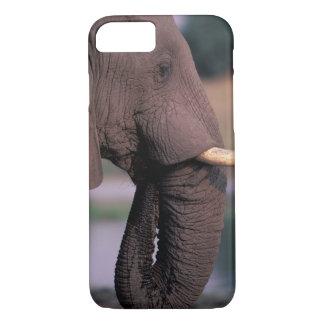 Africa, Botswana. Elephant (Loxodanta Africana) iPhone 8/7 Case