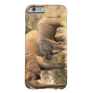 Africa, Botswana, Moremi. Elephant nursing Barely There iPhone 6 Case