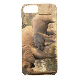 Africa, Botswana, Moremi. Elephant nursing iPhone 8/7 Case