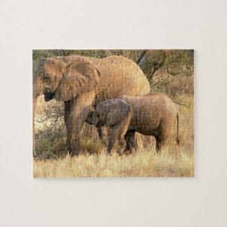 Africa, Botswana, Moremi. Elephant nursing Jigsaw Puzzle