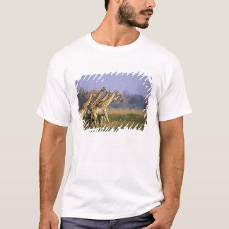 Africa, Botswana, Moremi Game Reserve, Herd of T-Shirt