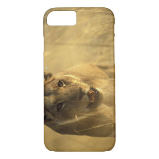 Africa, Botswana, Moremi Game Reserve, Lioness iPhone 8/7 Case