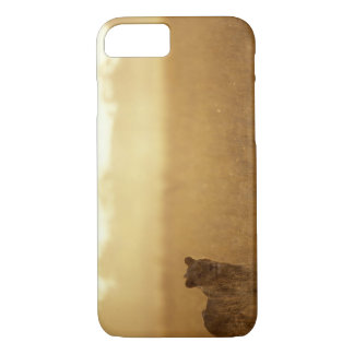 Africa, Botswana, Moremi Game Reserve, Male Lion iPhone 8/7 Case