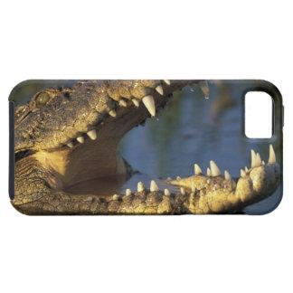 Africa, Botswana, Moremi Game Reserve, Nile iPhone 5 Cases