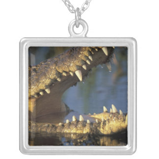 Africa, Botswana, Moremi Game Reserve, Nile Silver Plated Necklace