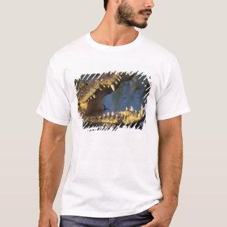 Africa, Botswana, Moremi Game Reserve, Nile T-Shirt