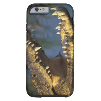 Africa, Botswana, Moremi Game Reserve, Nile Tough iPhone 6 Case