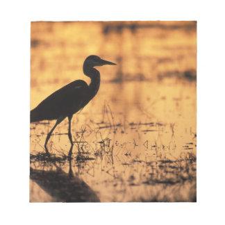 Africa, Botswana, Moremi Game Reserve, Notepad