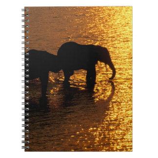 Africa, Botswana, Okavango Delta. African Spiral Notebook