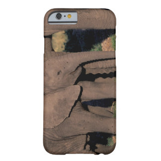 Africa, Botswana, Okavango Delta. Elephants Barely There iPhone 6 Case