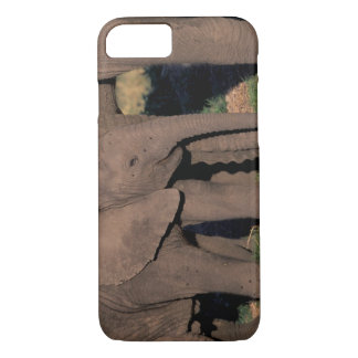 Africa, Botswana, Okavango Delta. Elephants iPhone 8/7 Case