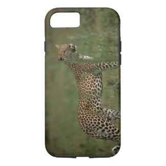 Africa, Botswana, Okavango Delta. Leopard iPhone 7 Case