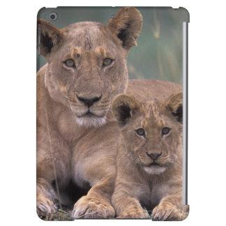 Africa, Botswana, Okavango Delta. Lions