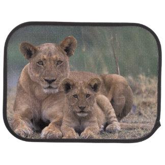 Africa, Botswana, Okavango Delta. Lions Car Mat