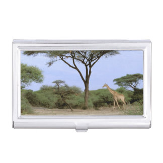 Africa, Botswana, Okavango Delta. Southern Business Card Holder