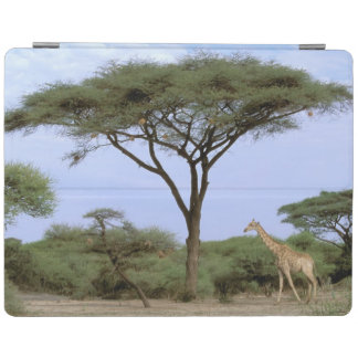 Africa, Botswana, Okavango Delta. Southern iPad Cover