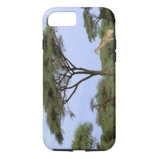 Africa, Botswana, Okavango Delta. Southern iPhone 8/7 Case