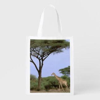 Africa, Botswana, Okavango Delta. Southern Reusable Grocery Bag