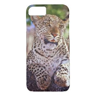 Africa, Botswana, Okvango Delta, wild leopard. 2 iPhone 8/7 Case