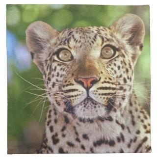 Africa, Botswana, Okvango Delta, wild leopard. Napkin