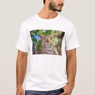 Africa, Botswana, Okvango Delta, wild leopard. T-Shirt