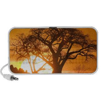 Africa, Botswana, Setting sun silhouettes Baobab iPod Speakers