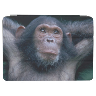 Africa, East Africa, Tanzania, Gombe National 2 2 iPad Air Cover