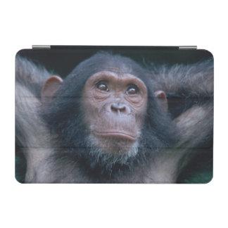 Africa, East Africa, Tanzania, Gombe National 2 2 iPad Mini Cover