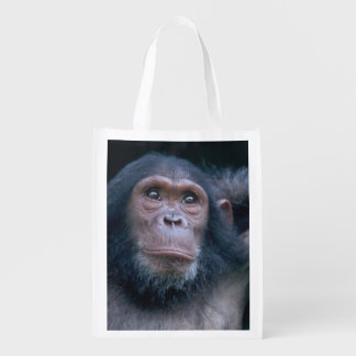 Africa, East Africa, Tanzania, Gombe National 2 2 Reusable Grocery Bag