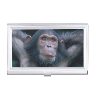 Africa, East Africa, Tanzania, Gombe National 2 Business Card Holder