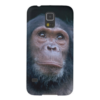 Africa, East Africa, Tanzania, Gombe National 2 Galaxy S5 Case