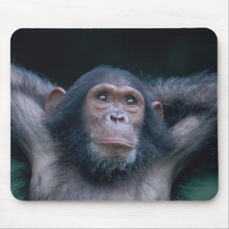 Africa, East Africa, Tanzania, Gombe National 2 Mouse Mat
