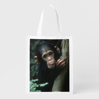 Africa, East Africa, Tanzania, Gombe National 2 Reusable Grocery Bag