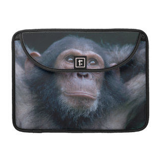Africa, East Africa, Tanzania, Gombe National 2 Sleeve For MacBooks