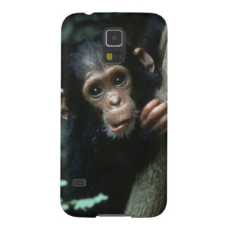 Africa, East Africa, Tanzania, Gombe National 3 Galaxy S5 Cover