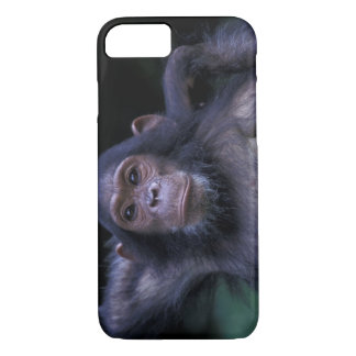 Africa, East Africa, Tanzania, Gombe National 3 iPhone 8/7 Case