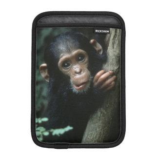 Africa, East Africa, Tanzania, Gombe National Sleeve For iPad Mini