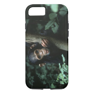 Africa, East Africa, Tanzania, Gombe National iPhone 8/7 Case