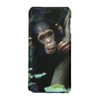 Africa, East Africa, Tanzania, Gombe National iPod Touch 5G Covers