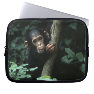 Africa, East Africa, Tanzania, Gombe National Laptop Computer Sleeves
