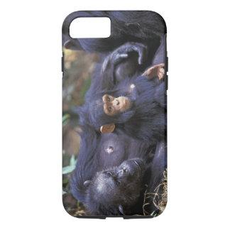 Africa, East Africa, Tanzania, Gombe NP Female iPhone 8/7 Case