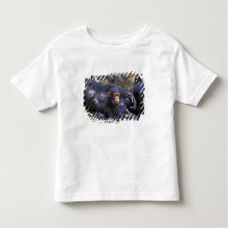 Africa, East Africa, Tanzania, Gombe NP Female Toddler T-Shirt