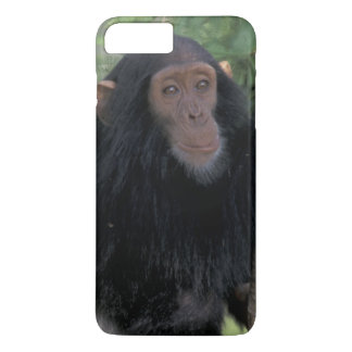 Africa, East Africa, Tanzania, Gombe NP Infant iPhone 8 Plus/7 Plus Case